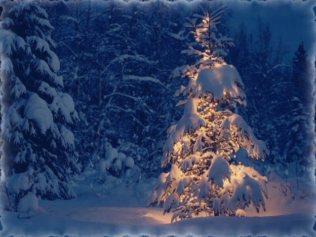 Blue-Christmas-Tree-Wallpaper