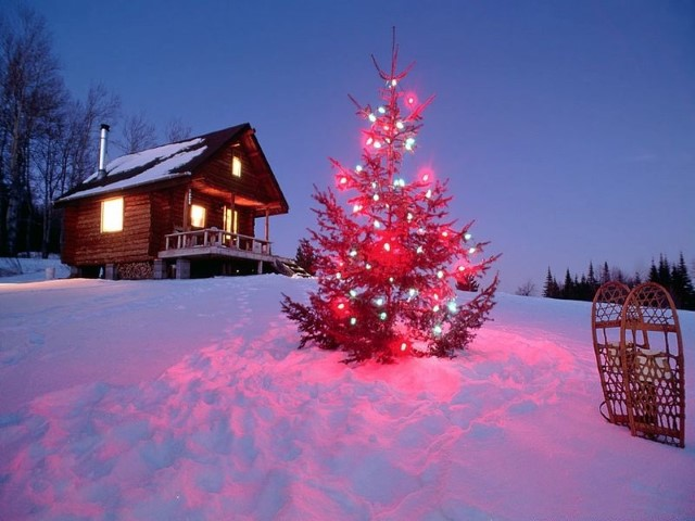 Christmas-Tree-Live-Wallpaper