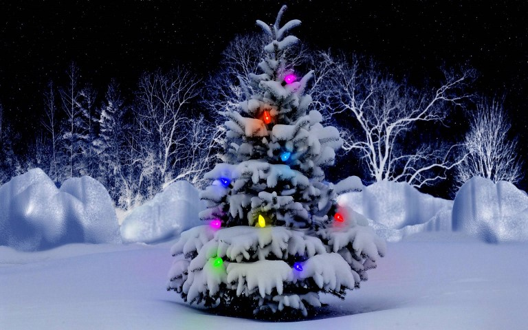 Christmas-Tree-Wallpapers-Pictures